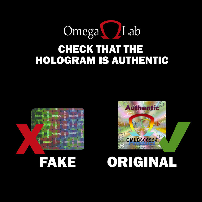HOLOGRAMA NGO INGLES